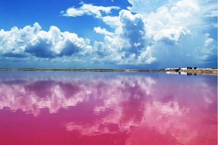 婚纱惊奇景点 墨西哥粉红色舄湖 - 3023.com