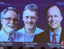 三名科学家获2019年诺贝尔生理学或医学奖