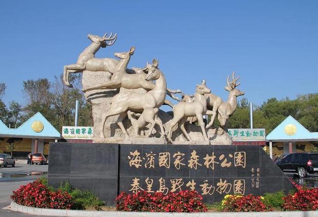 秦皇岛女游客在野生动物园被老虎咬死
