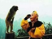 神吐槽:建国后成了精 神奇动物在这里图片