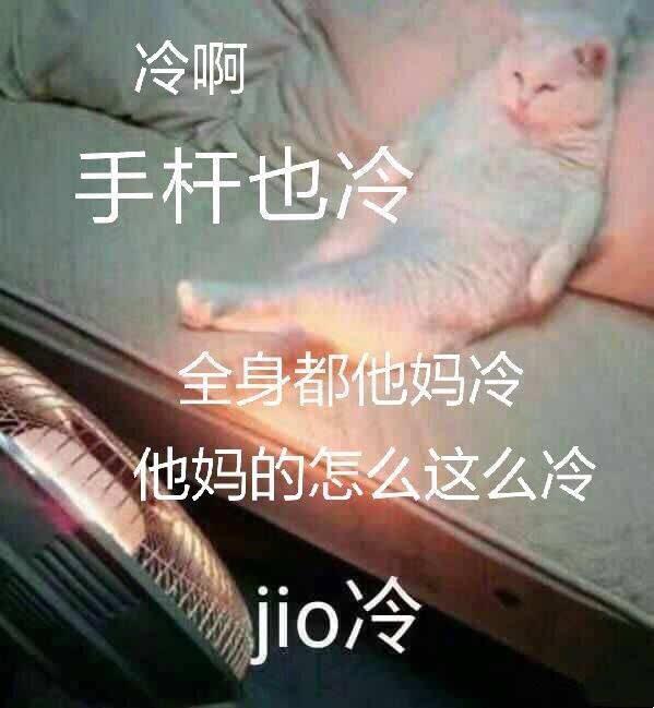 卧槽周刊:苍老师,第一次出镜!