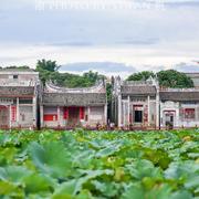 散落在云浮乡村的古建明珠,鲜为人知的国宝级大湾古建筑群