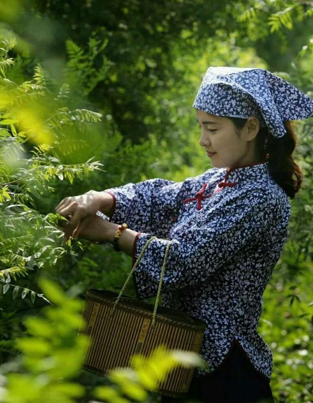 邱县第六届文冠果花节将于今年4月15日至4月25日在邱县文冠果种植基地举办,15日上午在文冠科技园举行开幕式。