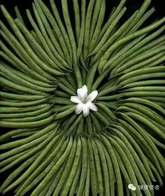 健康 正文  用花朵,种子,树叶,蔬菜 编织的图案 居然可以如此美 是