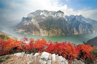 巫山红叶节开幕图片