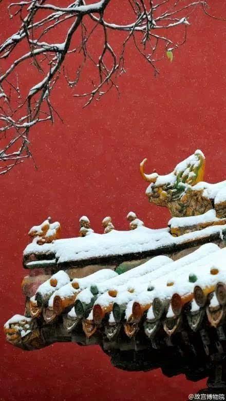 美了千年的古刹中国风 西安罗汉洞村观音禅寺内有一棵千年银杏树,据说