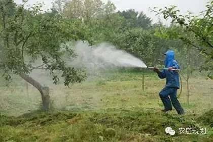 野兔,虽然斑点落叶病和卷叶蛾依然肆虐,但木村觉得苹果树已经结束长期