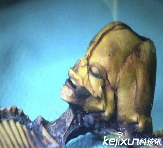 宇宙船ufo啥牌子图片