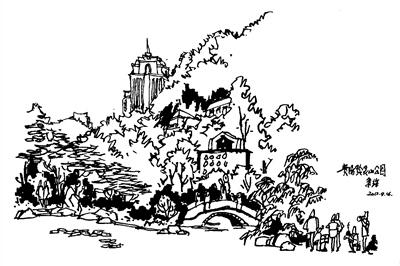 植物公园手绘线稿