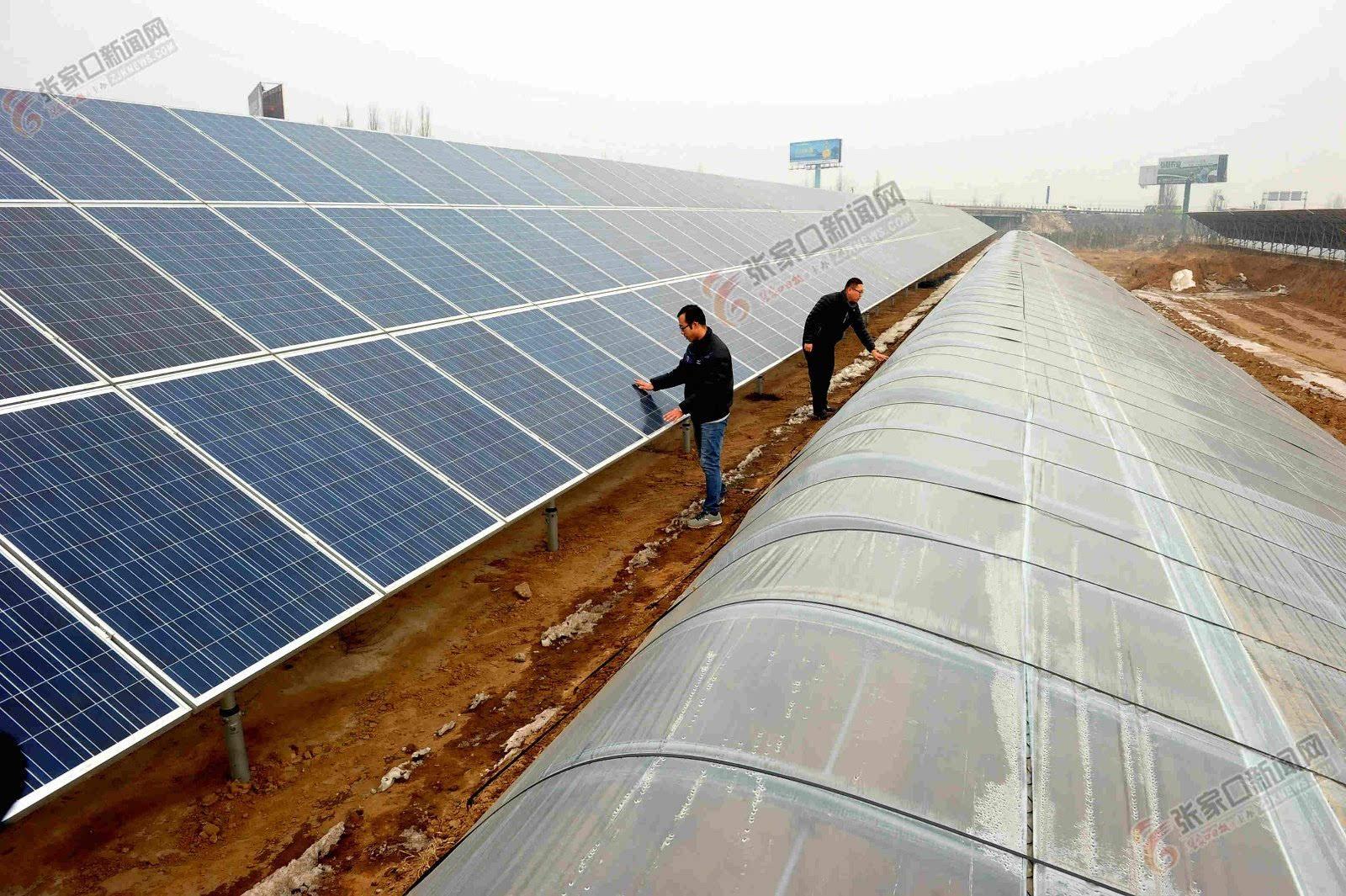 大棚土墙上安装光伏太阳能发电电池板.