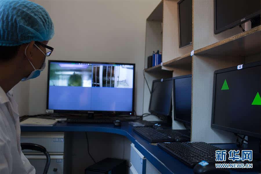 中科院昆明动物研究所动物模型和人类疾病机理重点实验室的胡新天研究