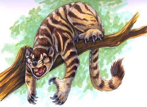 袋狮是一种大型强力的有袋目哺乳动物,通常会在树林当中进行狩猎.