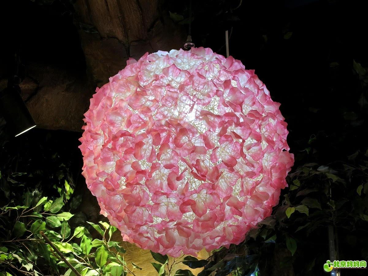粘土花球步骤图片