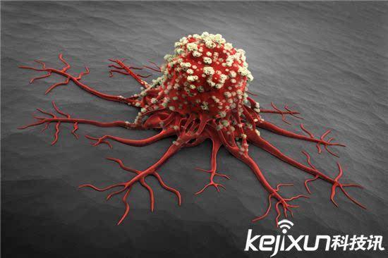 如今日本东京医科大学的研究人员研究发现血型对于患