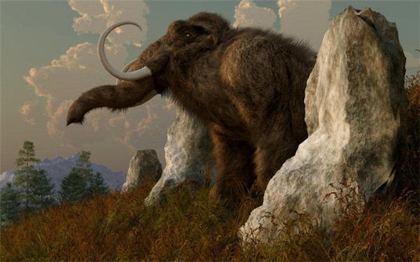 世界上灭绝的动物图片