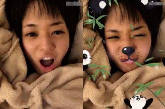 还用软件将照片p满了熊猫和竹子图案