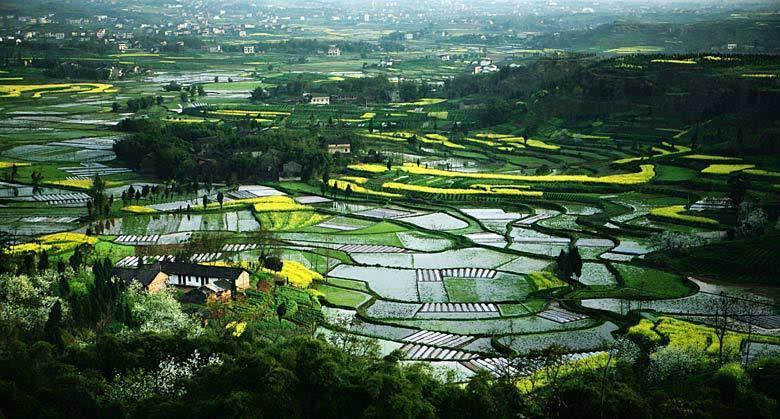 平利美丽乡村建设经验成为陕西省地方标准