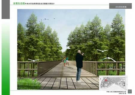 13水杉林效果图