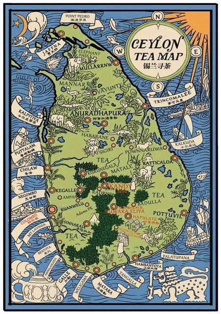 精彩专题 锡兰 寻茶去 一场红茶引发的定制旅行