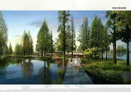 昆山南部水乡湿地公园景观绿化项目