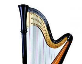 竖琴和箜篌最大的差别在于,竖琴是双排弦,箜篌是单排弦.图片