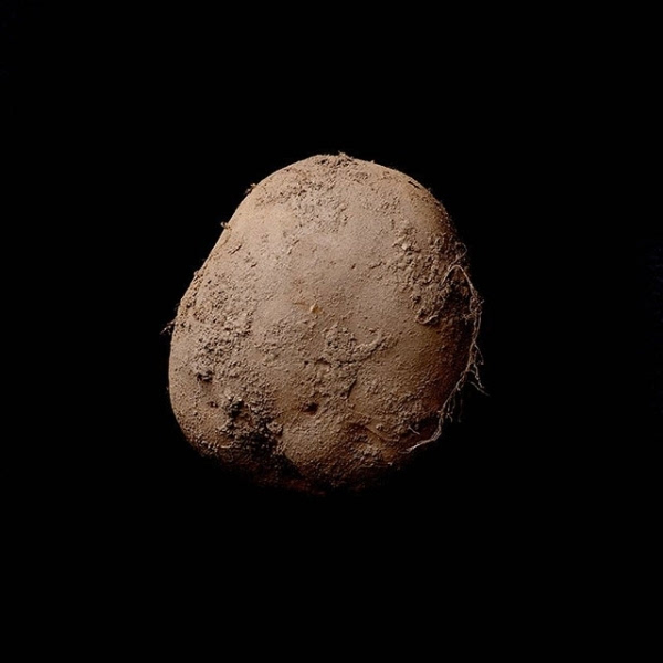 既然能将一张土豆的照片卖到天价,那背后的故事绝对不一般.图片