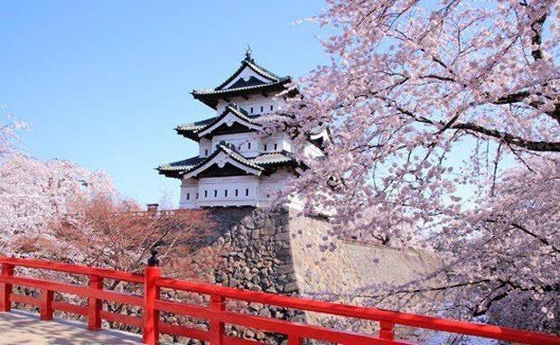 2016日本樱花季即将到来 你准备好了吗