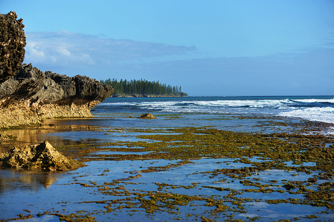 """新喀里多尼亚""""天堂之岛""""松木岛"""