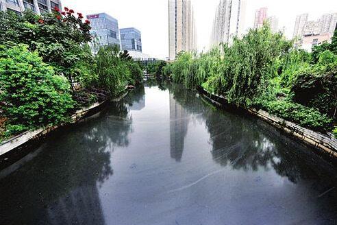 全国295座城市逾七成存在黑臭水体