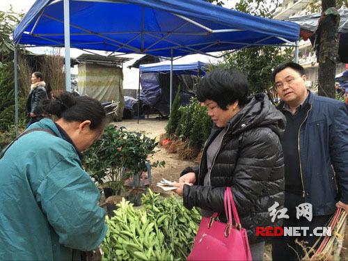 管家婆马报图彩图2016-湖南 隆回县30个流动图片