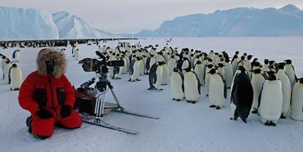 暌违十年 BBC纪录片《行星地球》第二季以4K姿态回归的照片