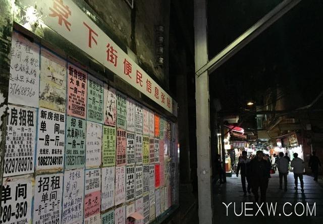 阿辉房东校花