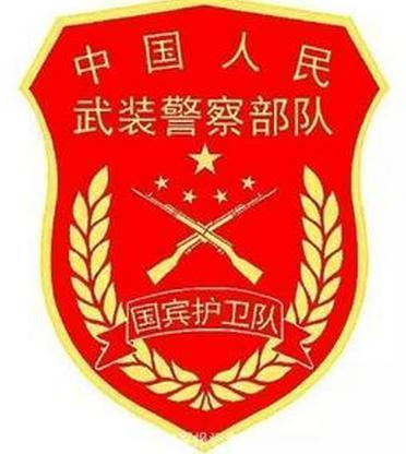 武警换新式标志服饰新式臂章与现行臂章有5处不同 武警图片