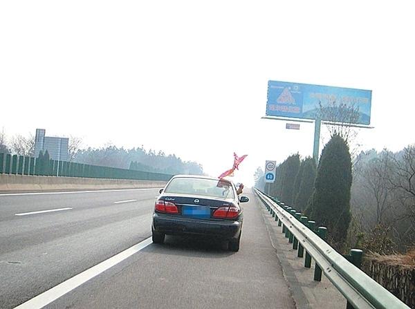 高速路上一只猫影评