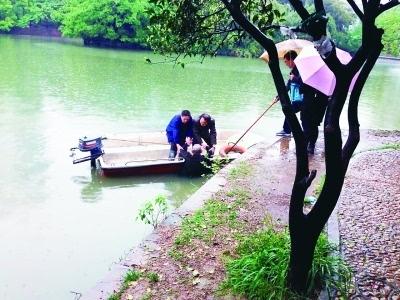 本报讯(记者谢冰林)昨天下午,一名老人在中山公园游园时不慎落入园区图片