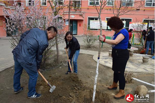"""振兴社区开展""""民族团结结对子植树""""活动"""