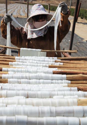 甘肃定西:传统手工制作马铃薯粉条助农增收