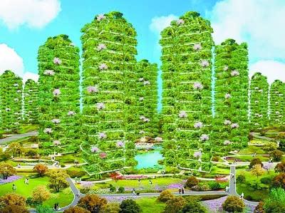城市森林花园:户户都有空中花园是怎样的感受图片