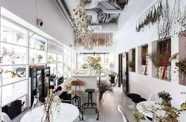 颇具北欧风格的装修设计和被精心布置的植物, 让客人来到这里都会