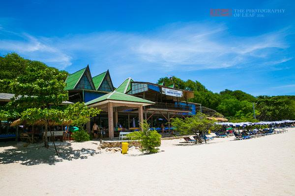芭堤雅格兰岛,尽享阳光与沙滩