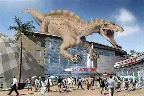 动物园,赣州自然博物馆,赣州海洋生物馆,五龙客家风情园水上乐园,恐龙