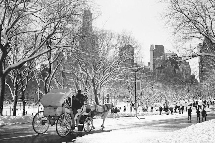 风光摄影:纽约中央公园黑白雪景图片