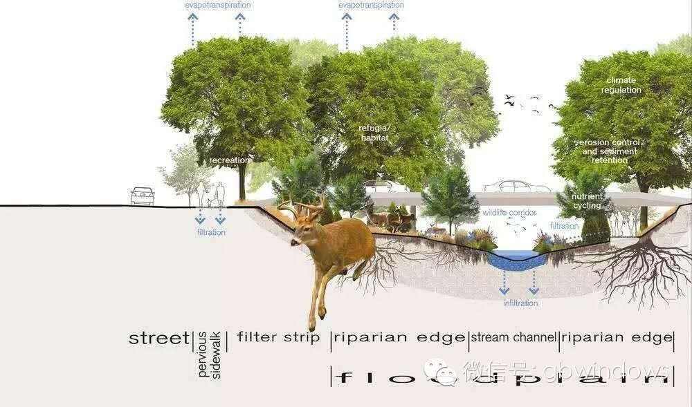 一份海绵城市LID手册,专业的让你叹服 - 节能(电)改变生活 - 节能改变生活-专业节能博客