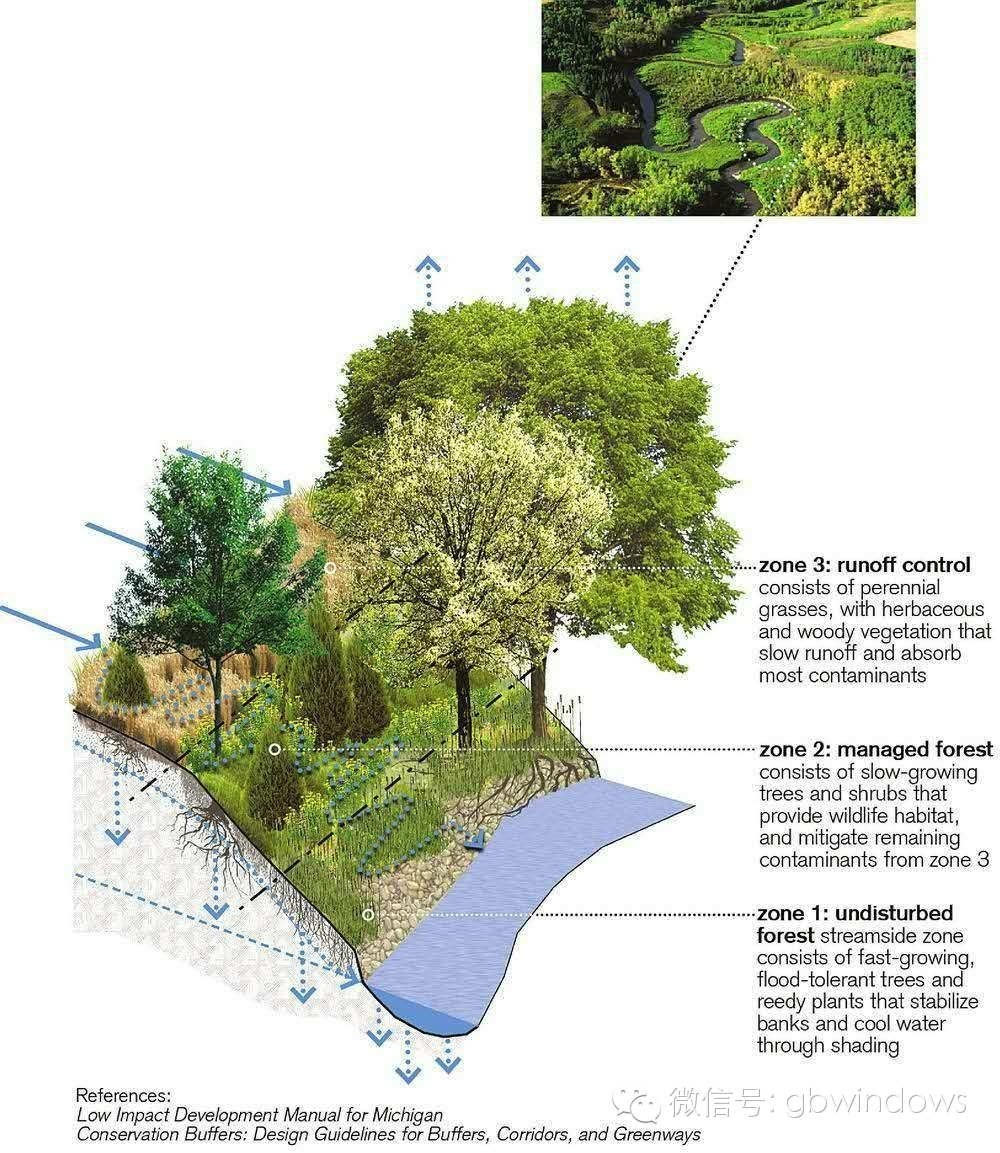 盆景 盆栽 平面图 植物 1000_1153
