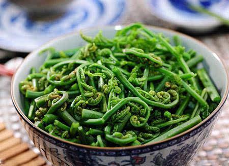 蕨菜的营养价值