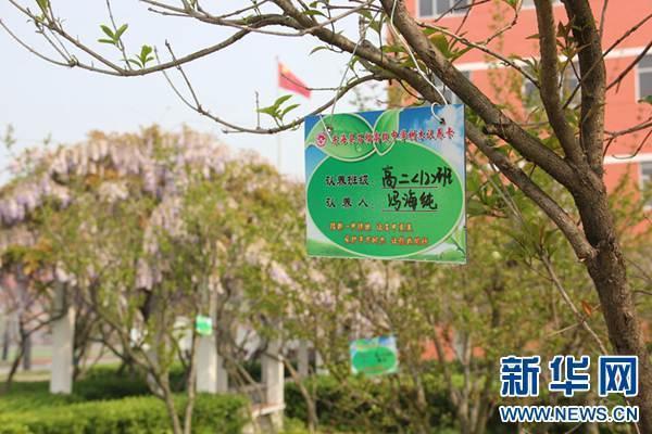 东海县石榴高级中学:认养小绿树 凝聚大爱心