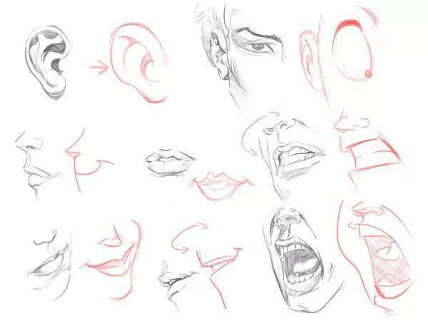 手绘线条图像耳檆