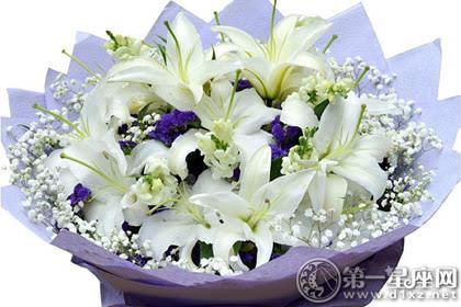 洁梦境的结合 百合花搭配满天星图片图片