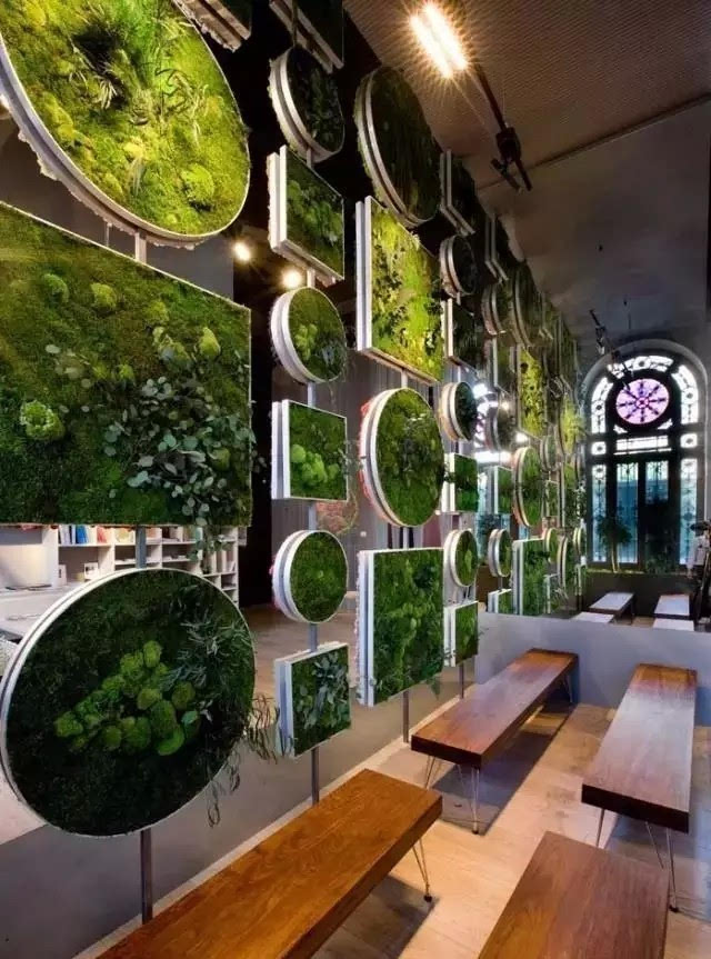 植物墙价格_室内植物墙价格_植物墙 室内空气净化神器