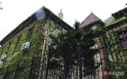 青岛老房子穿新装 藤蔓缠绕似古堡
